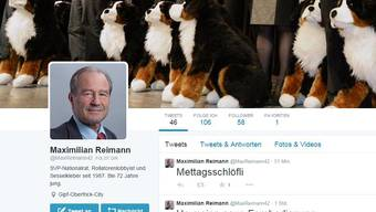 Fake-Account von Maximilian Reimann