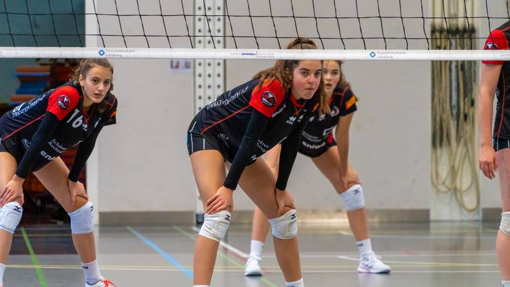 Nationaler Nachwuchsverein BTV Aarau Volleyball 1. Liga