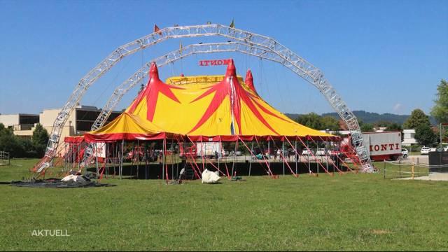 Freie Sicht im Zirkus Monti