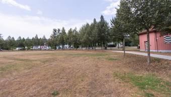 Auch andere Sport- und Schulplätze sehen so aus, wie der Telliring. Nämlich braun statt grün.