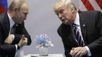 Auch US-Republikaner lassen kein gutes Haar an ihrem Präsidenten (Donald Trump, rechts) und kritisieren die Ergebnisse seines Gesprächs mit dem russischen Staatschef Wladimir Putin am G20-Gipfel in Hamburg.
