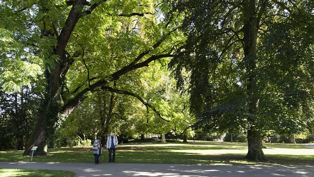 Grünflächen in Städten helfen, Strassen und Eisenbahnlärm als weniger belastend zu empfinden. Bei Fluglärm ist jedoch das Gegenteil der Fall, wie Forschende herausfanden. (Symbolbild)