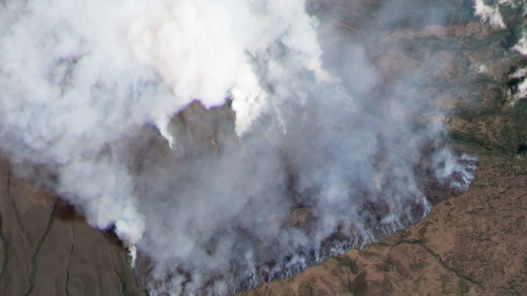 Kilimandscharo brennt weiter - Bergsteiger-Camp evakuiert