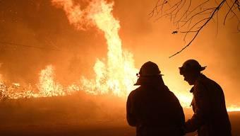 Die Feuerwehren bekämpfen nach wie vor pausenlos die Buschfeuer in der Region von Sydney. EPA/DAN HIMBRECHTS AUSTRALIA AND NEW ZEALAND OUT