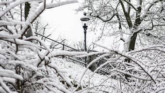 Es gibt sie noch, die guten Dinge, ist Martina Rutschmann überzeugt. So beispielsweise der Schnee.