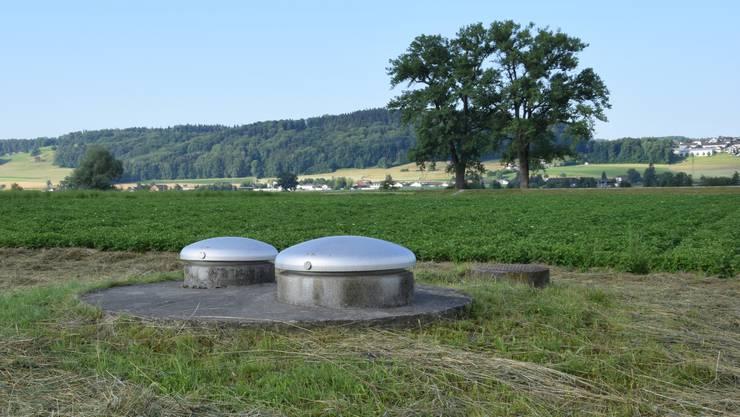 Die Grundwasserfassung Eichholz, inmitten landwirtschaftlicher Nutzflächen zwischen Wohlen und Waltenschwil.
