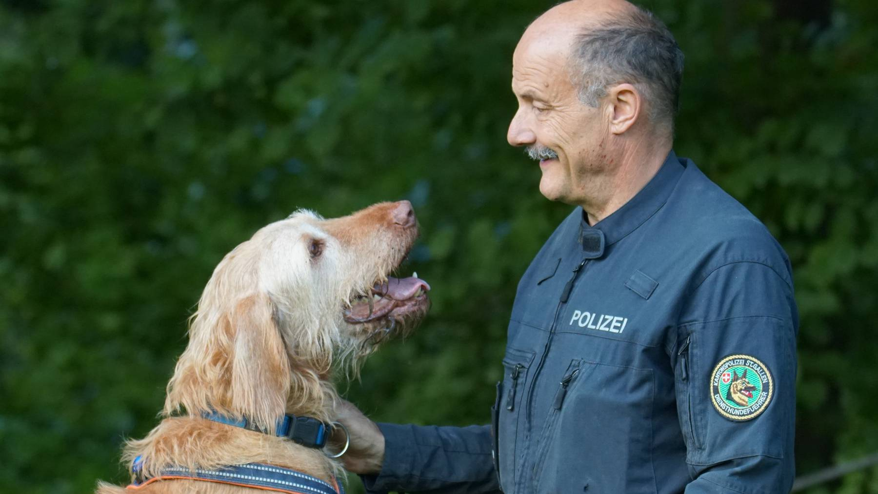 Polizeihund Lupo geht in Pension.