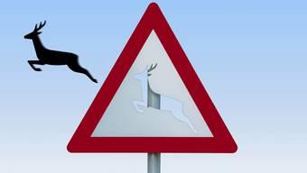 Wegen eines Rehs auf der Strasse kam ein Junglenker von der Strasse ab. (Symbolbild)
