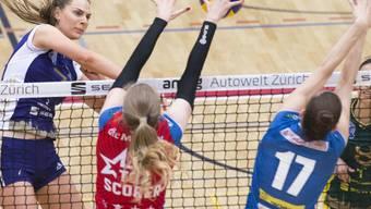 Frauen-Volleyball bietet Action und Spektakel