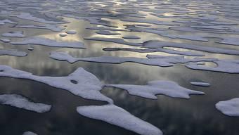 Das Wintereis in der Beringsee schmilzt laut einer Studie mit hohem Tempo. (Archivbild)