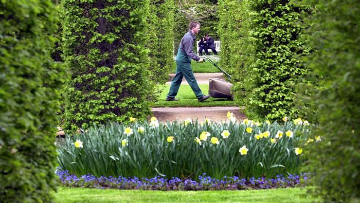 Das Zonenreglement wurde von der PUEK wie folgt ergänzt: Grünflächen sind mit einheimischen und standortgerechten Pflanzen zu begrünen. (Symbolbild)