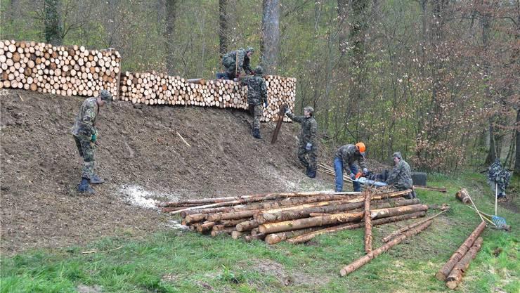 Die Rekruten erstellen den Kugelfang auf dem Kronenwall mit Rundhölzern. René Birri