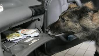 Volltreffer: Bargeld-Spürhund am Zoll in Bietingen (D) wird fündig.
