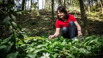 Auf dem Grüterhof in Reitnau stellt Therese Baumann ihr Bärlauch-Pesto her.
