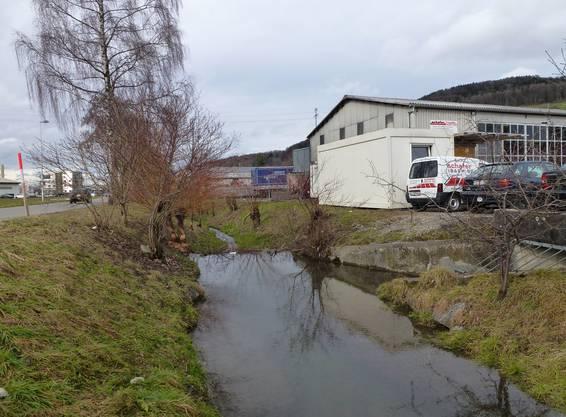 Problematischer Damm bei einer Einleitstelle von Regenbecken und Kanalisationsentlastung.