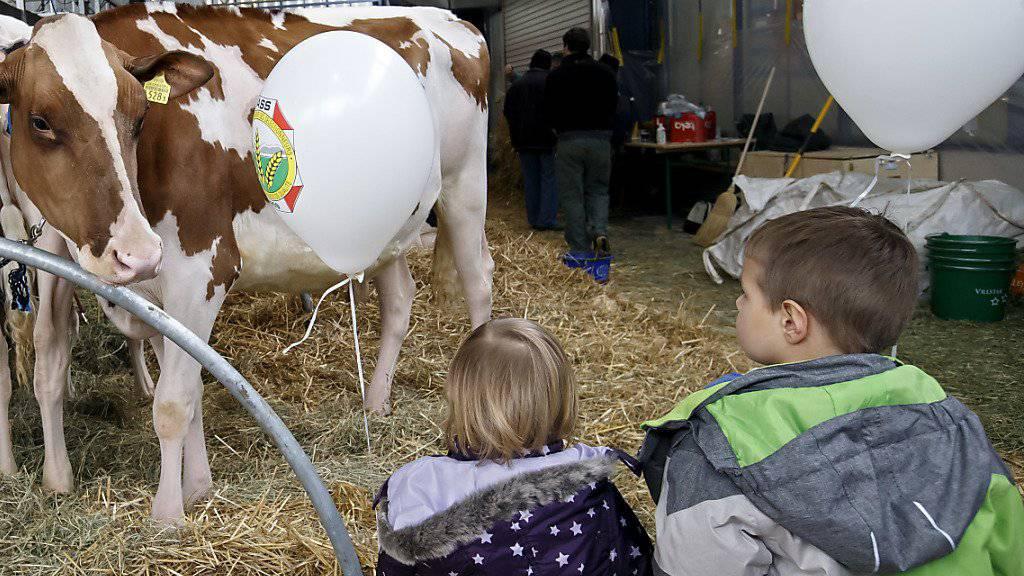Die Swiss Expo organisiert auch Führungen für Schulklassen. (Archivbild)