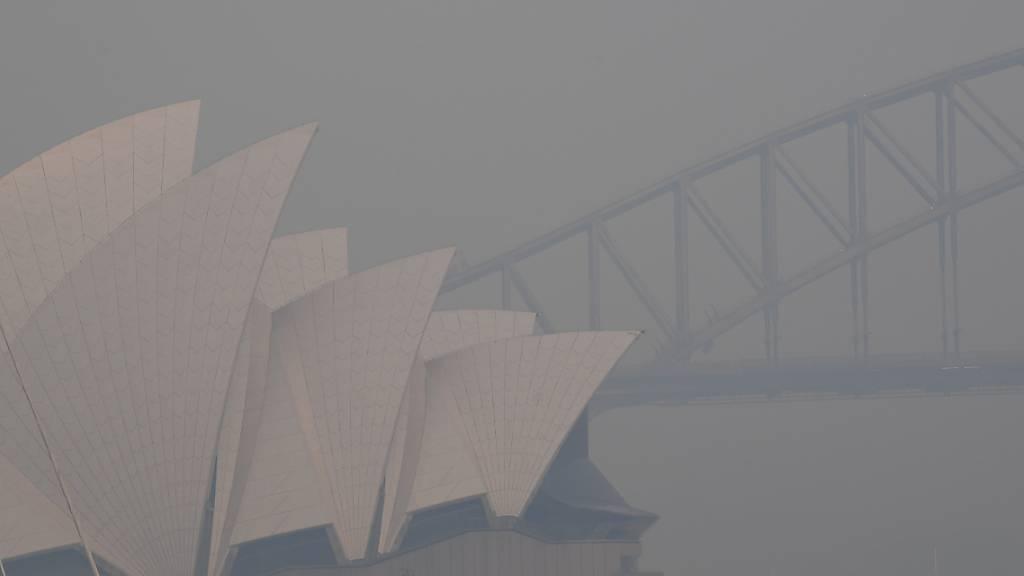 Dichter Rauch über Sydney - Buschbrände wüten weiter