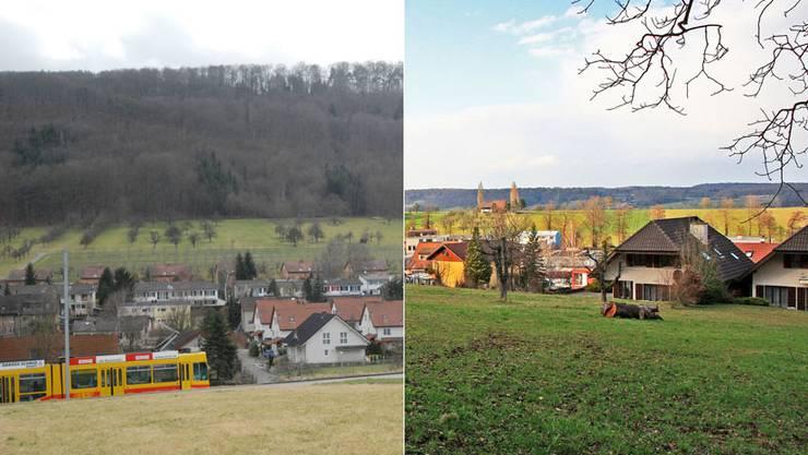 An einer Gemeindeversammlung sprachen sich die Stimmbürger für eine Fusion von Witterswil und Bättwil aus.