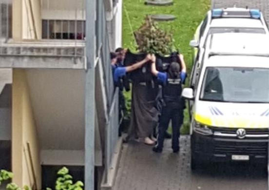 Eine Person wird von der Kantonspolizei in Möhlin abgeführt.