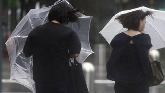 """Viel Regen und Sturmwinde: Auch die japanische Metropole Tokio ist von Taifun """"Shanshan"""" betroffen."""