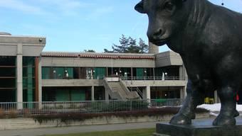 Tägi: Im Gartenbad wacht symbolisch der Stier von Eduard Spöri über die Projektierung. (Dieter Minder)