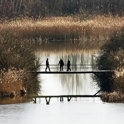 Spaziergänger am Pfäffikersee. (Archiv)