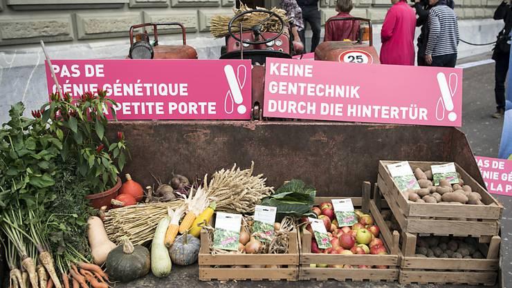 Gentech-kritische Organisationen überreichen in Bern Obst, Gemüse - und eine Petition. Sie fordern, dass neue Verfahren dem Gentechnikgesetz unterstellt werden.