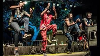 Thumb for 'Mokoomba: Kumakanda (Zimbabwe)'