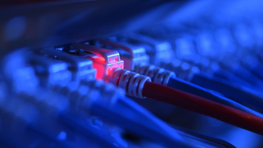 ARCHIV - In der EU soll eine alternative Möglichkeit geschaffen werden, sich im Internet zu identifizieren. Foto: Felix Kästle/dpa
