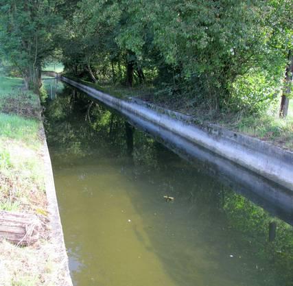 Jährlich ertrinken zehn Tiere im Kanal.  zvg