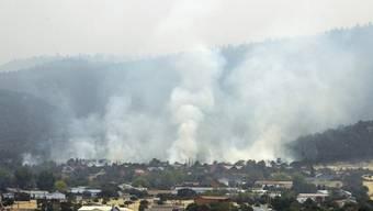 Tausende verlassen das Städtchen Alpine in Arizona wegen dem Waldbrand