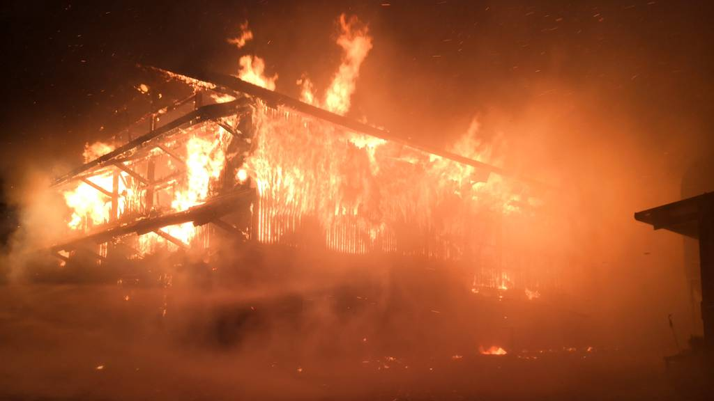 Scheunenbrand in Müswangen fordert mehrere tote Tiere