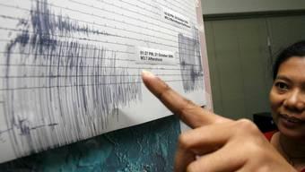 Das starke Beben vor der Küste von Honduras löste eine Tsunami-Warnung in der Region aus. (Symbolbild)