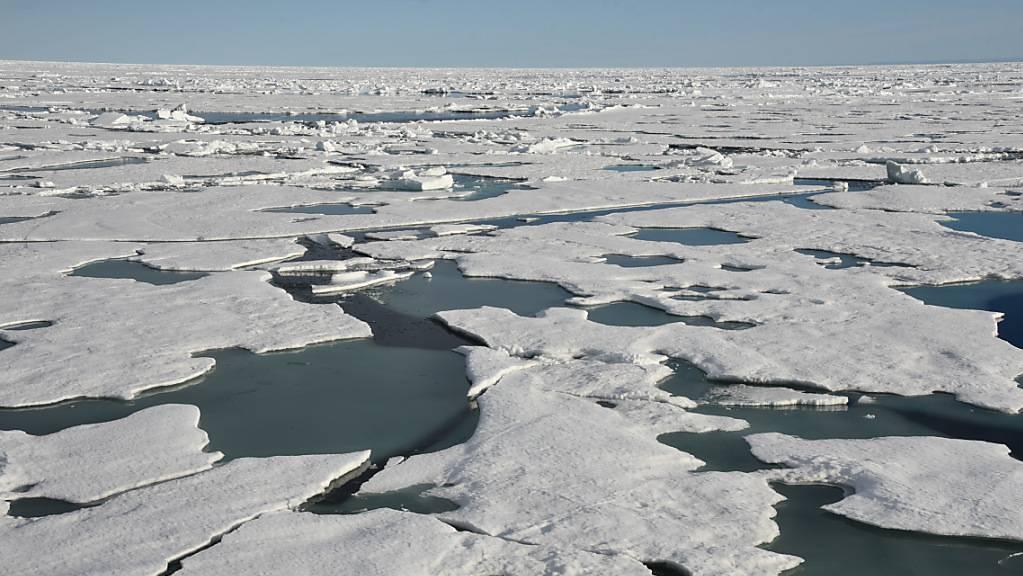Eisschollen treiben auf dem Arktischen Ozean am Nordpol. (Archiv)
