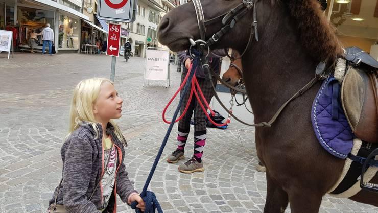 Ein aussergewöhnliches Bild: Ein Pony in der Oltner Altstadt, das einem in die Augen sieht.