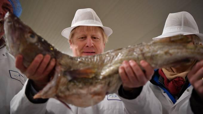 """""""Take back control"""": Das versprach der britische Premier Boris Johnson insbesondere für die britischen Fischerei-Gebiete"""