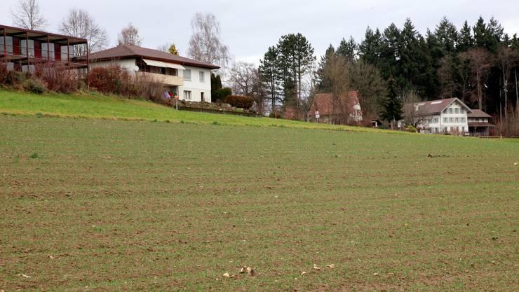 Erschliessung Schleif in Kyburg-Buchegg