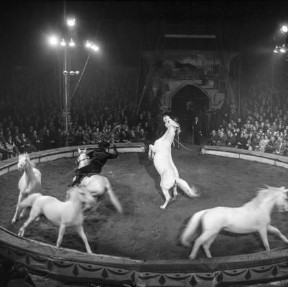 In Rapperswil findet im März 1958 die Galavorstellung mit reitenden Cowboys statt.