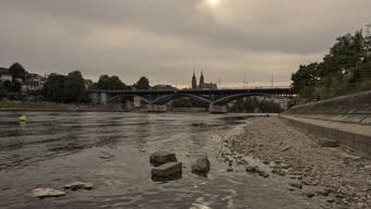 Rheinbord-Grüsel