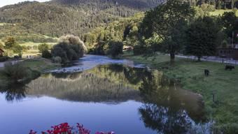 Der Doubs soll ein guter Lebensraum für die bedrohte Fischart Apron und andere Fische werden. Dafür wollen die Behörden mit einem Aktionsplan sorgen. (Archivbild)