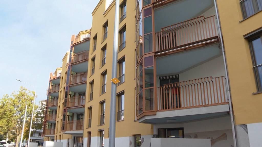 Bezahlbare 5,5-Zimmer-Wohnungen: Wohnsiedlung Hornbach stellt sich vor