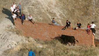 Tödliche Stierhatz in  Cuéllar