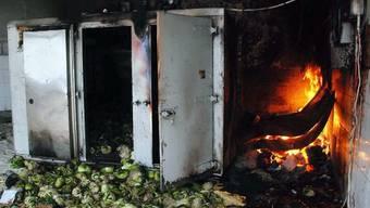 In einem überfüllten libanesischen Gefängnis eskaliert die Gewalt