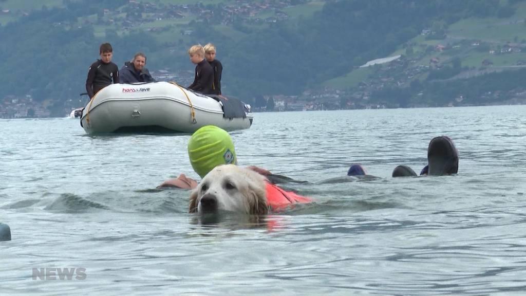 Ferienpass Rettungsschwimmen: Sicherer Badespass für Kinder