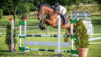 Pferdesporttage 2017