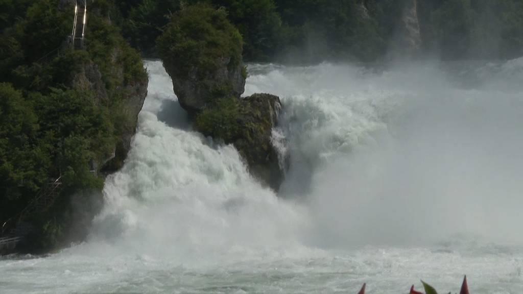 Wegen Unwetter: Tosende Wassermassen am Rheinfall