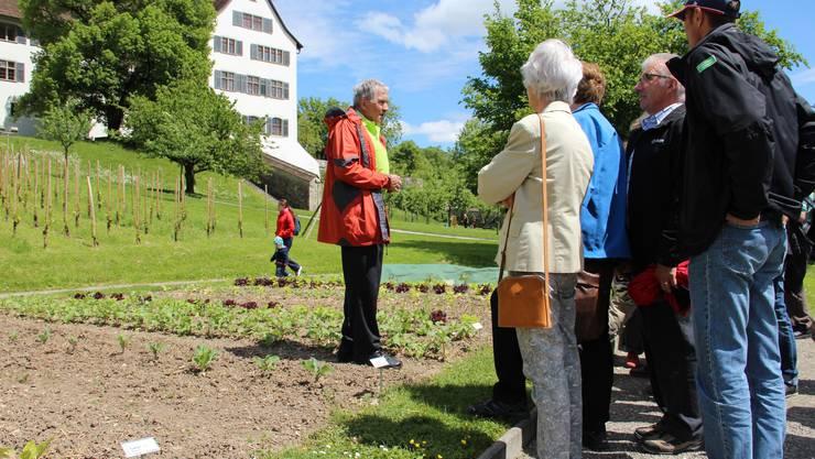 Kurt Honegger erklärt die Pflanzenwelt im Schlossgarten