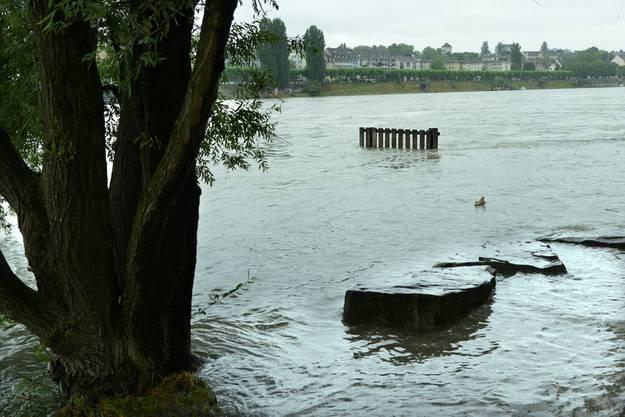 Und auch für die Rheinschwimmer und -geniesser ist der Fluss nicht ganz so gemütlich wie sonst.