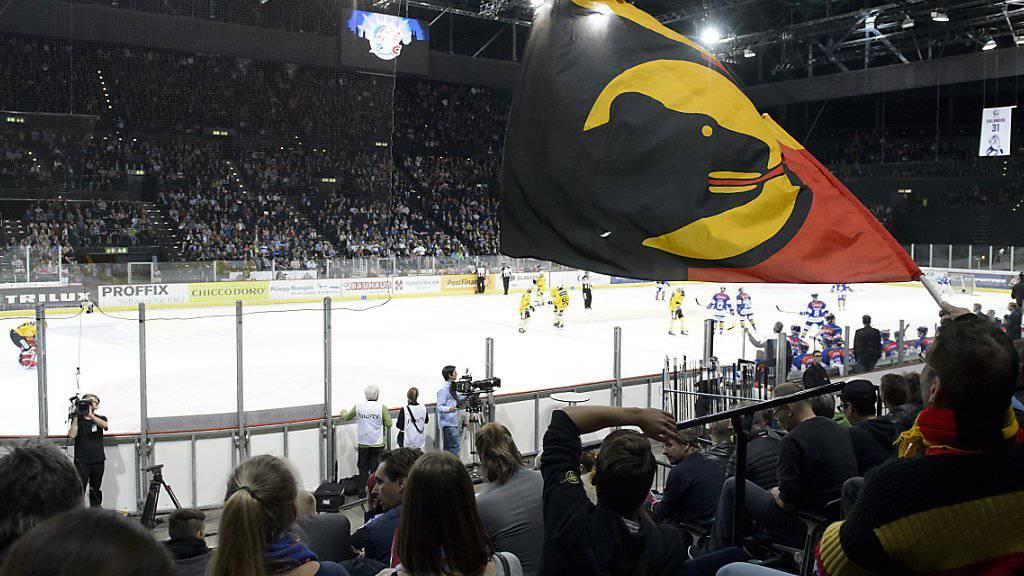 Volles Haus trotz sportlicher Magerkost: Der SC Bern ist auch 2015/16 der europäische Zuschauerkrösus.