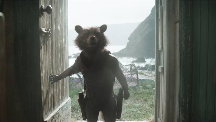 Vorlauter Waschbär: Auch Rocket Raccoon hat seinen Auftritt im neuen Science-Fiction-Actionfilm «Avengers: Endgame»